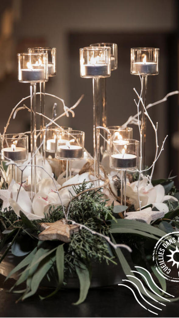 cymbidium_noel_photovideo_charline_nov2018.jpg